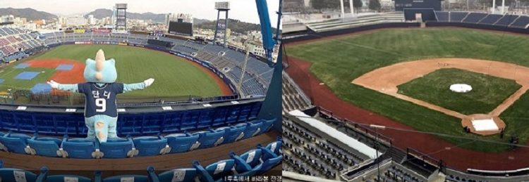 NC다이노스 새구장오픈,엔씨직원 1500명,23일 창원 개막전 단체관람나선다
